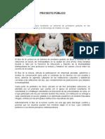 Proyecto Público