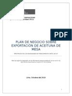 59252971-Estructura-Del-Plan-de-Negocios-Coop-60-Reparado-Jueves-27-Octubre (1).doc