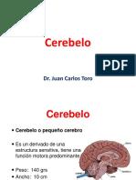 07cerebelo-141103211008-conversion-gate01.pdf