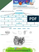 2 ciclo N 194 agosto15.pdf