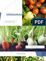 Calidad de Verduras - Del huerto a la mesa.