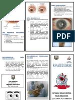 191683544-Leaflet-Katarak.pdf