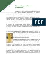 1 Los medios de cultivo en microbiología.docx