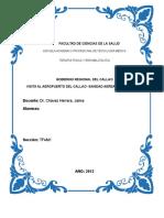 Sanidad Aerea Internacional 2013 (1)