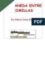 Rivera, Gabriel J - Castaneda Entre Comillas.doc