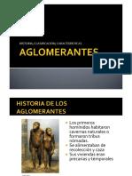 03 AGLOMERANTES