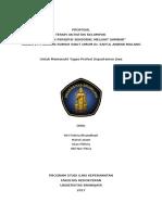 Proposal TAK Stimulasi Sensori Melihat Gambar