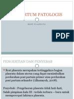 Post Partum Patologis
