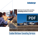 Coalbed Methane Consulting Services 08os139