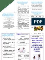 284119873-Leaflet-Kehamilan-Dengan-Risiko-Tinggi.doc