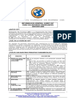 Documento Voluntariado VIII.