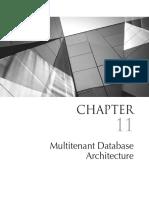 Multitenant Database Architecture