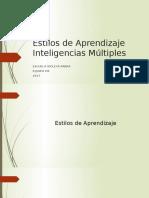 Estilos e Inteligencias 2