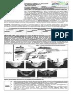 7° Guía 7 y 8. Tipos nutrición -Nutrición algas, hongos, bacterias. Eutrofización humedales 2017