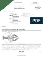 FAO Fisheries & Aquaculture - Cultured Aquatic Species Information Programme - Cherax Quadricarinatus (Von Martens, 1868)