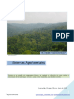 sistemas-agroforestales (1).pdf