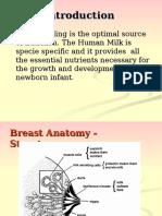Breastfeeding 120912050521 Phpapp01