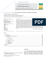 Production of Recombinant Proteins by Microbes and Higher Organisms