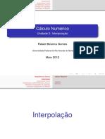 03 Interpol a Cao