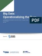 Ema Operationalizing the Buzz Big Data