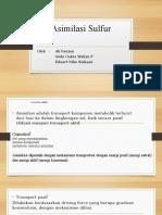 Asimilasi Sulfur