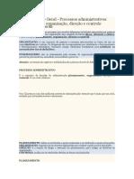 PROCESSO ADMINISTRATIVO.docx