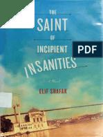 Elif Shafak-The Saint of Incipient Insanities_ a Novel-Farrar, Straus and Giroux (2004)