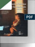 Inventario de Problemas Conductuales y Socioemocionales (IPCS)