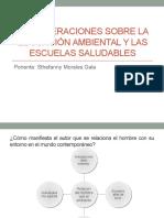 Salud Publicaaa Entorno Saludable