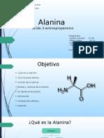 Alanina