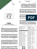 Ave-Maria-Robert-Prizeman.pdf