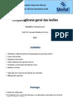 1 - Etiopatogênese Geral Das Lesões