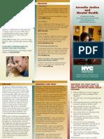 JJ_and_Mental_Health_Brochure_141311_Final.pdf