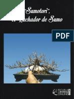 Sumotori El Luchador eBook