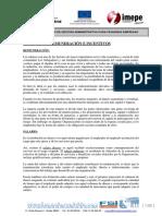 Remuneracion_incentivos.pdf