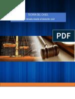 Cartilla Teoria Del Caso en materia civil