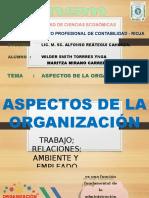 Aspectos de La Organizacion_diapositivas