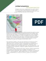 Historia e Identidad Amazónica