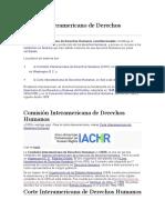 Sistema Interamericano de Derechos Humanos (1)