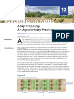 Alley Cropping an Agroforestry Practice