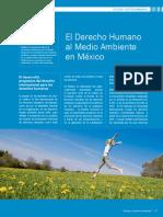 El_Derecho_Humano_al_Medio_Ambiente_en_Mexico.pdf