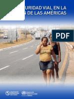 OPS Seguridad Vial en Las Américas
