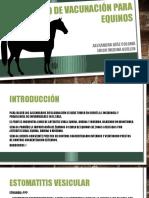Calendario de Vacunación Para Equinos