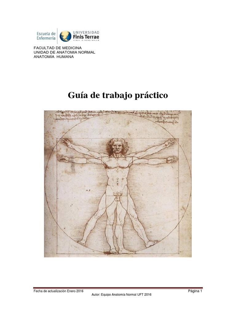 Libro de Guias Practico de Anato 2016