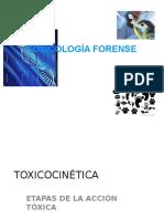 Terapia Toxicologica Antídotos.pptx