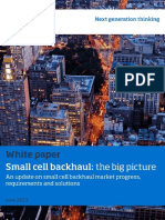 Small Cell Backhul the Big Picture