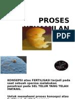 proses kehamilan (2)