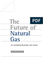 The Future of Natural Gas-mit