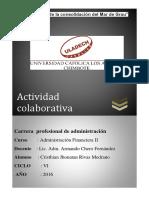 ACTIVIDADA COLABORATIVA (1)