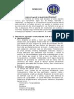 CEREMONIAS.docx